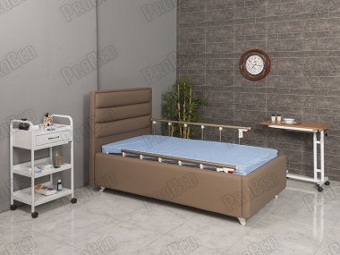 A Basilica Patient Bed with Wood
