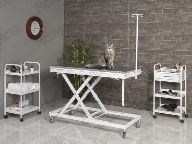 Manual Veterinary Surgery Desk