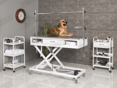 Veterinarian Surgery and Operations Desk