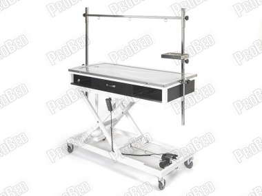 Electric Veterinary Surgery and Operations Desk