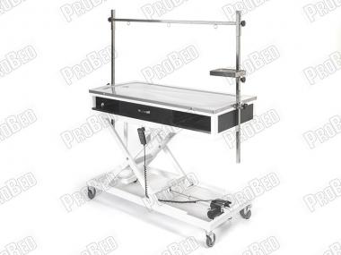 Elektrikli Veteriner Ameliyat ve Operasyon Masası, Pet Bakım Masası, Motorlu Veteriner Sedyesi