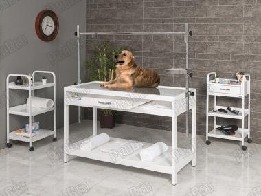 Veteriner Pet Bakım ve Muayene Masası | ProBed-6001