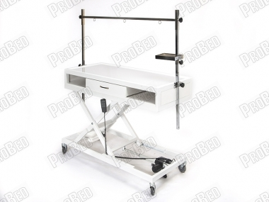 Electric Veterinary X-ray Table