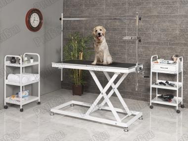 Vet Pet Maintenance and Exam Table
