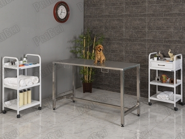Compact Stainless Veterinarian Surgical Table