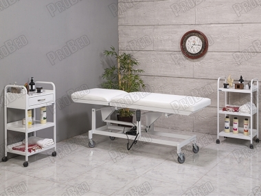 Electric Two-Motor Examination Table