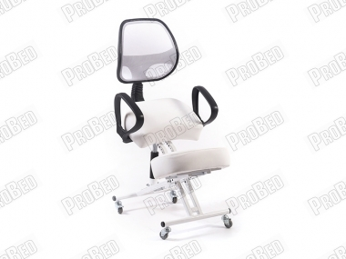 Depreciated Upright Posture Chair   Rear-White