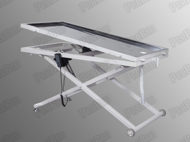 Motor 2 Electric Veterinary Exam Table