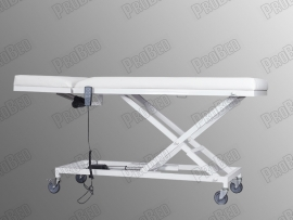 ProBed-3111 Two Electric Motor-Table (Face Of Putting Native)